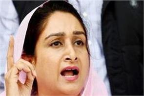 lok sabha elections 2019  priyanka gandhi  harsimrat badal