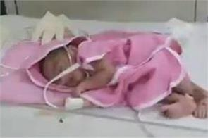 newborn baby adopt  journalist