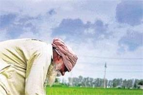 barnala  farmer  debt waiver list