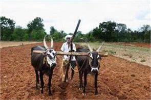 12 305 crore distributed under prime minister farmer scheme