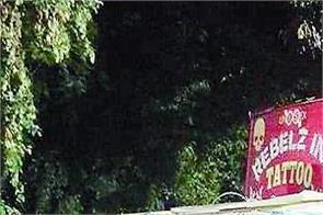 municipal council  immigration company  illegal board