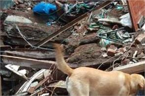 mumbai accident sniffer dogs building debris