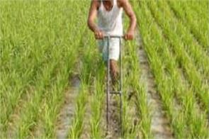 estimates of agricultural products prices up this year