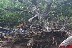 food and heavy rainfall in bihar