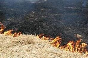 rotten straw at 2758 places in punjab