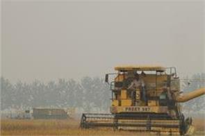 village kup  farmers  wheat  sowing  straw