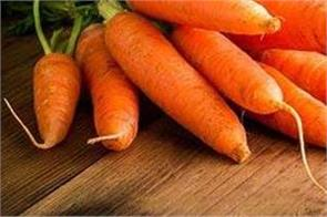 carrots increase immunity  learn more about its benefits