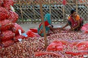 govt left with 25 000 tonnes buffer stock onion nafed
