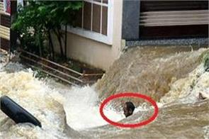 hyderabad rain water roads 11 people death