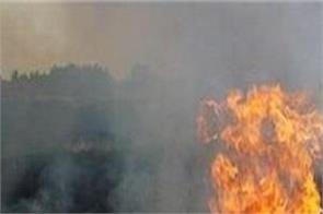 punjab  straw  burned  area  reduction