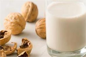 drink walnuts boiled in milk before going to bed the body benefits