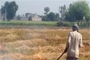 farmer died shock received after stubble burning