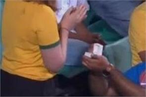 india vs australia indian fan proposing australian lady sydney cricket ground
