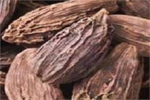 black cardamom relieves frequent headaches  learn how