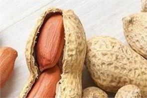 eat peanuts in winter apart from heart diseases