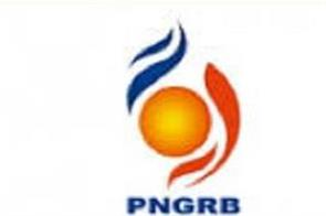 pngrb approves idx to operate as gas exchange for 25 years