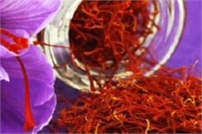 saffron is good for health  cures many diseases besides diabetes