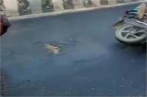 road accident bathinda