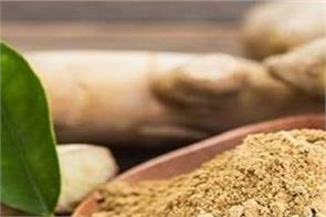 extremely beneficial for the body eating ginger powder will have many benefits