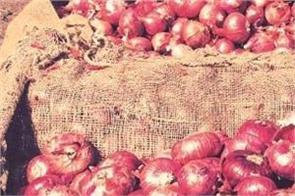 import results in of onion prices