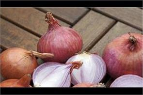 onion production in india