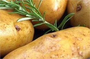 potatoes  health benifits