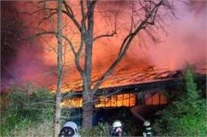 fire at german zoo kills many monkeys