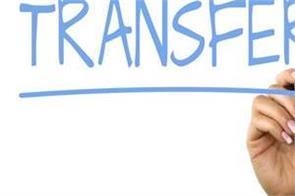 19 ips  official transfer