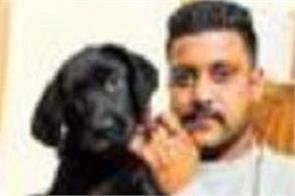 ludhiana  gold  dogs  theft