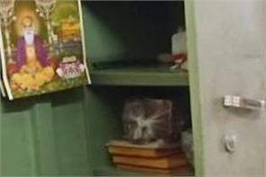 bhawanigarh  7 shops  theft