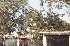 jalandhar  municipal corporation