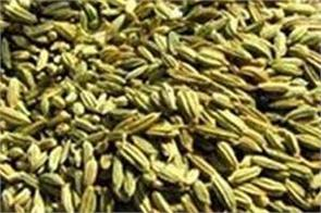 fennel seeds health benifits