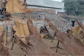 jalandhar leather industries