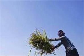 government of punjab  farmer  scheme  chandigarh