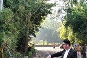 madhya pradesh bjp mla sanjay pathak resort  bulldozer