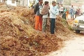 bathinda  police  raid   assault