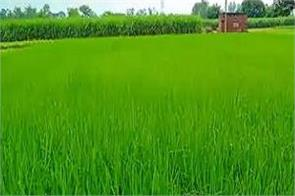 central govt gives discount on interest rates for small agricultural loans