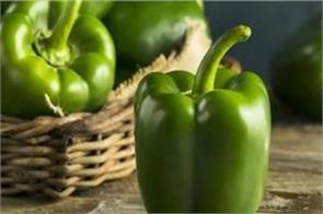 pepper helps to increase immunity for weight loss
