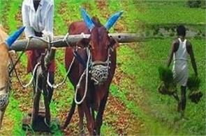 government s gift to farmers 10 of kcc will be used for this purpose