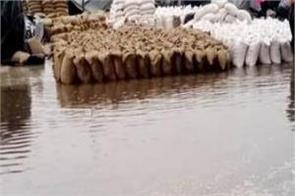 thousands of sacks of wheat were sacrificed to rain water