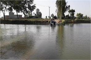 village dhani natha singh