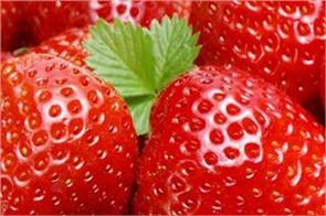 strawberries benefits