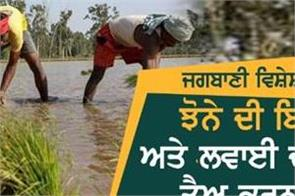 why the delay in sowing and sowing of paddy