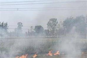 there were 730 cases of burn strike in punjab