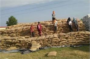 wheat lifting  laborers disturb
