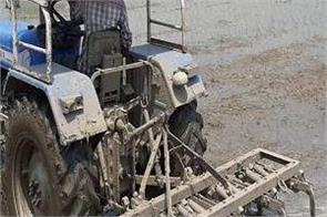 paddy planted by paddy farmers before june 10 was destroyed