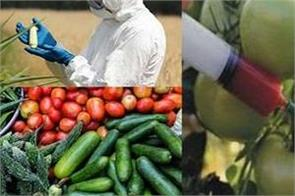 pesticides in fruits and vegetables are killing people