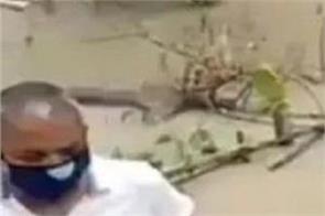 social media assam floods mla video viral