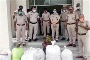 hisar police seize 1 quintal 40 kg of cannabis from truck  arrest driver