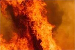 usa california wildfire